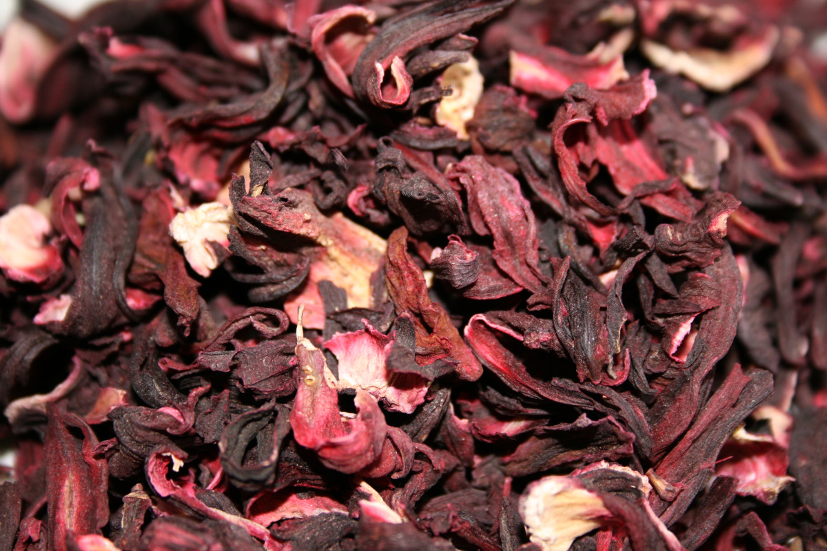 Hibiscus sabdariffa flowers after being dried out, and ready to make tea.
