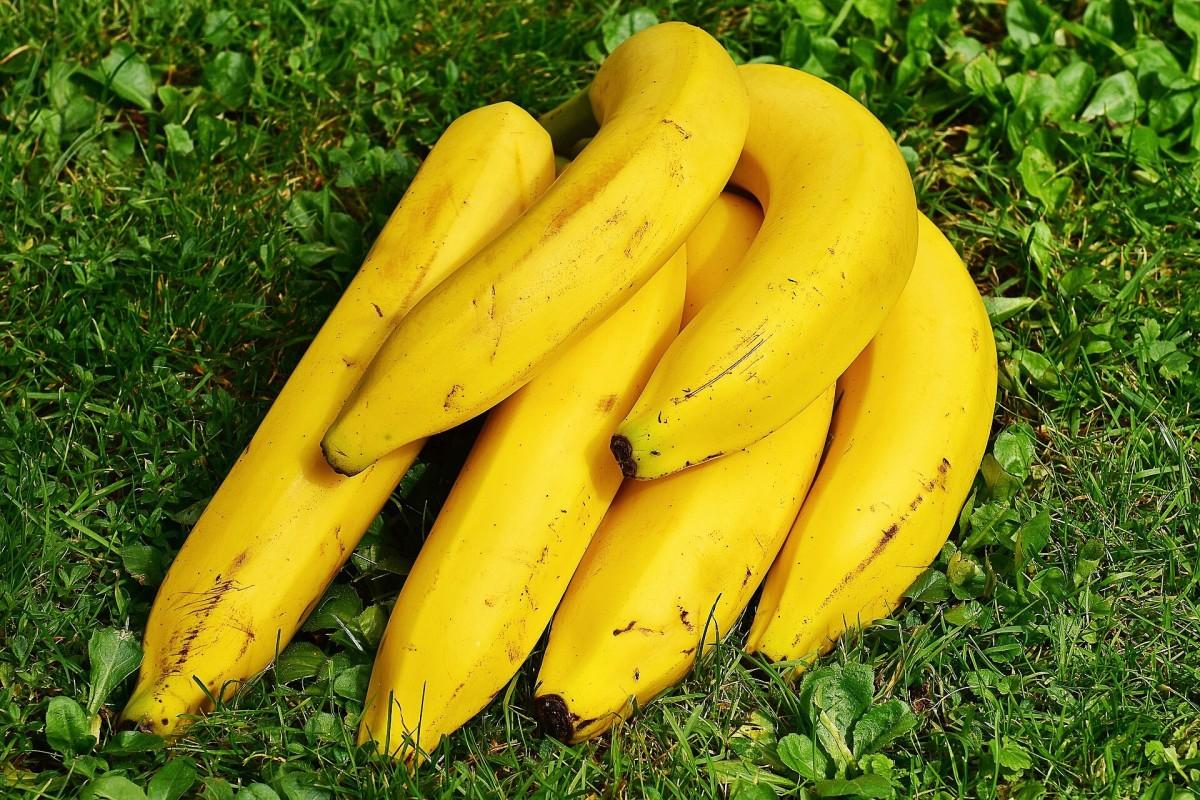 Bananas contain inulin.