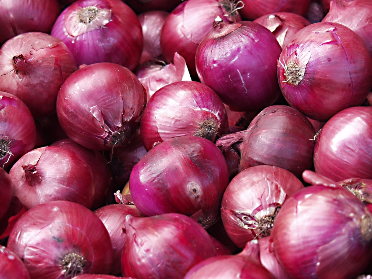 Onions are a good source of inulin.
