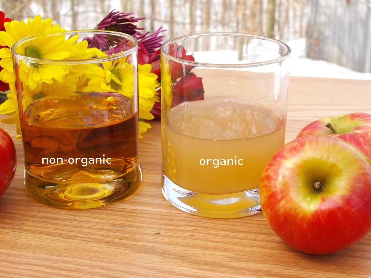 2 Organic Or Non Apple Cider Vinegar