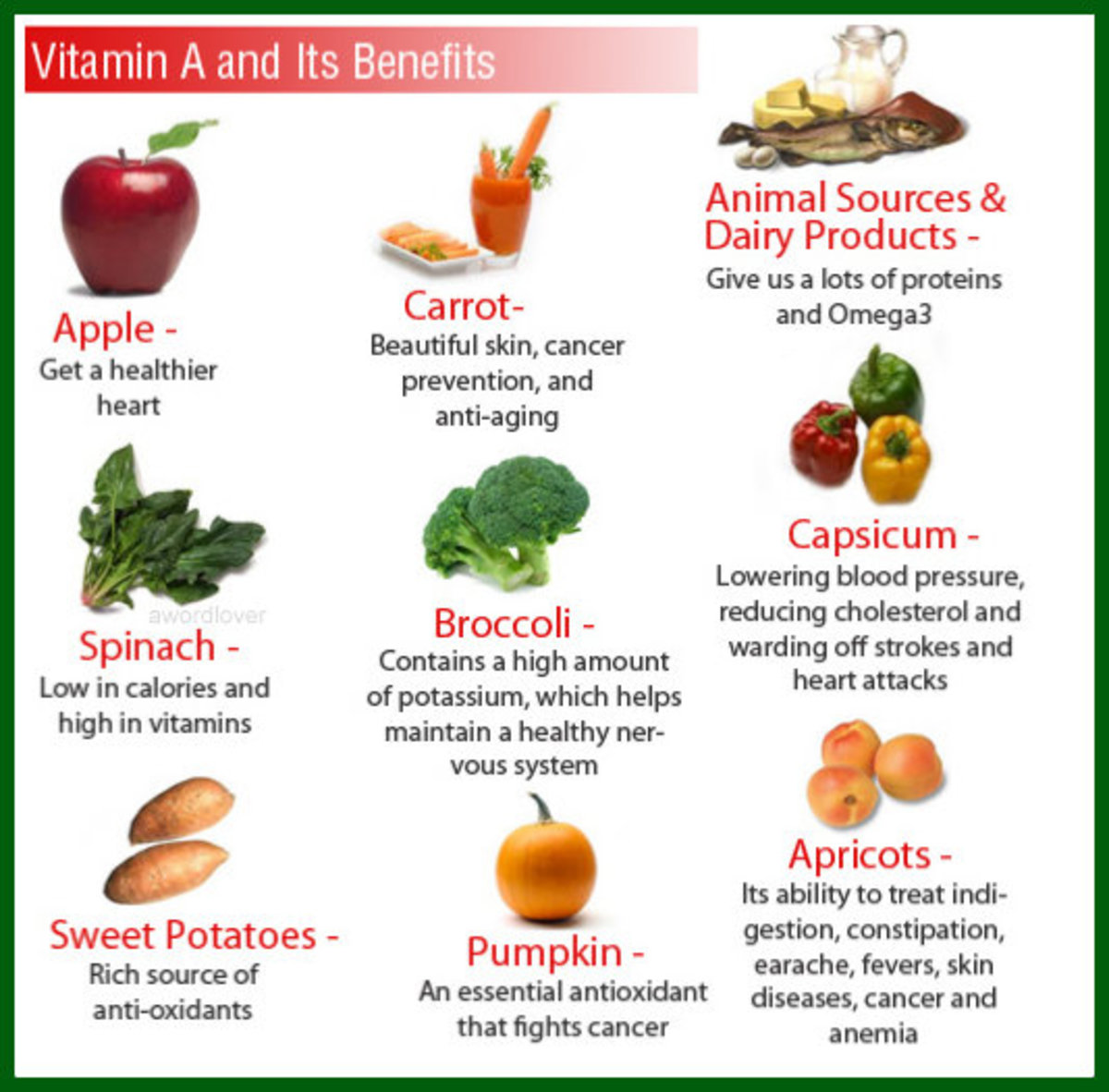 Another graphic listing food sources and the corresponding body function