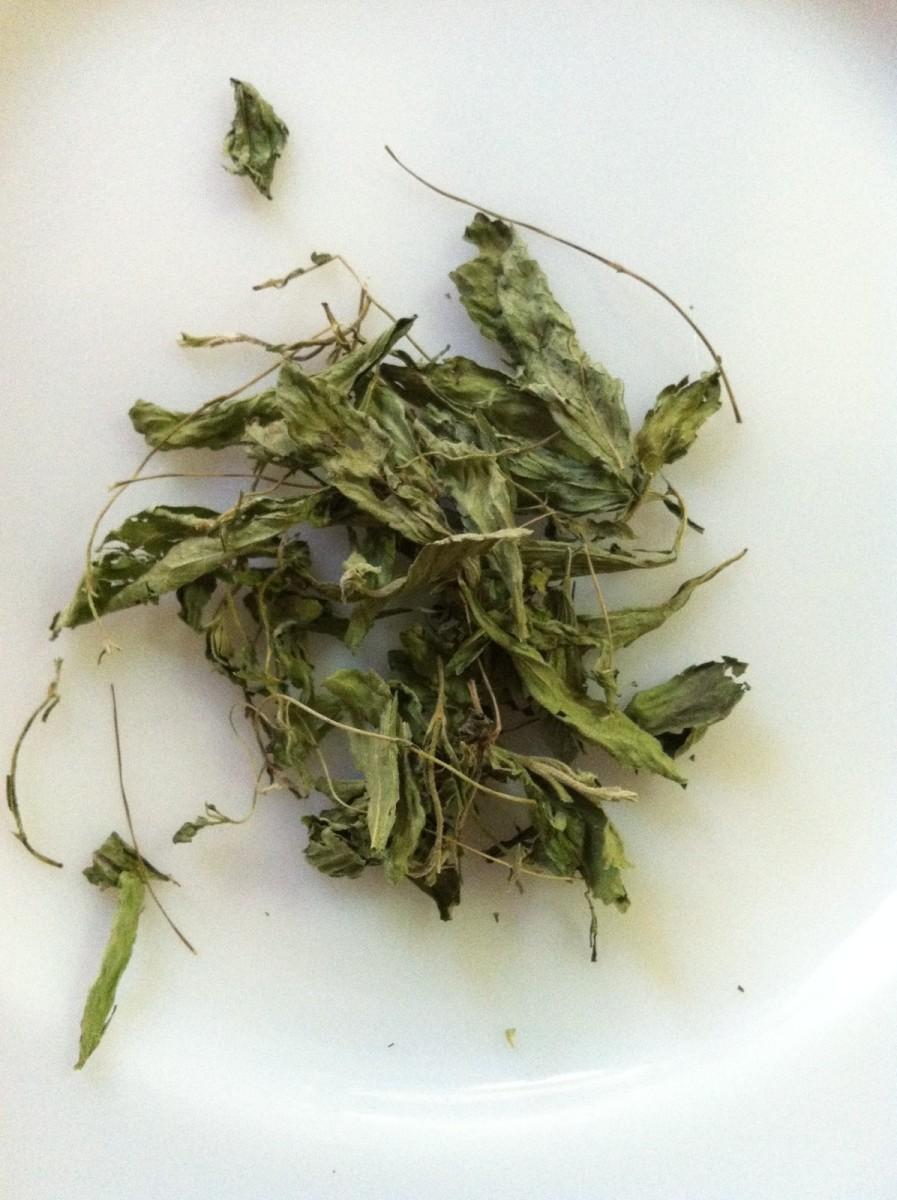 Dried Stevia plant.