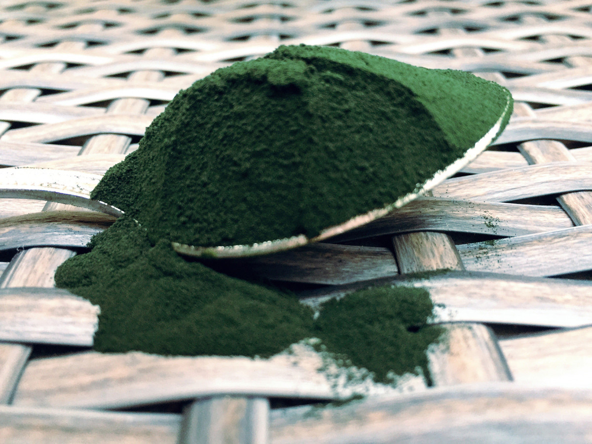 Spirulina - The Blue Green, Chlorophyll Filled, Algae-like, Super Healthy Food.