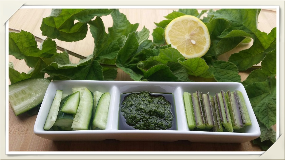 A raw vegan dish of cucumber and common hog weed stems served with a lemon juice, wild garlic, and nettle pesto.
