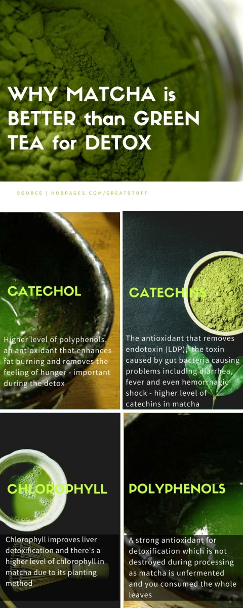 Matcha vs green tea powder