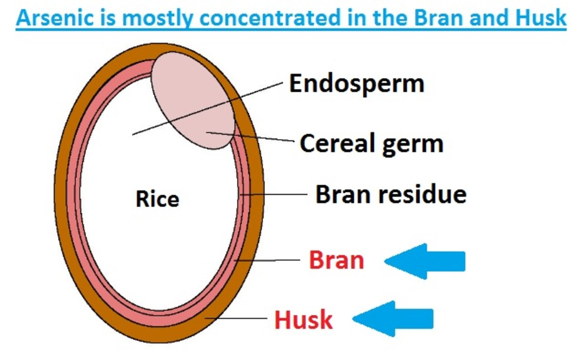 The Bran and Husk are the areas where arsenic levels are the highest. White rice usually has lower arsenic levels because these areas are stripped away during processing.
