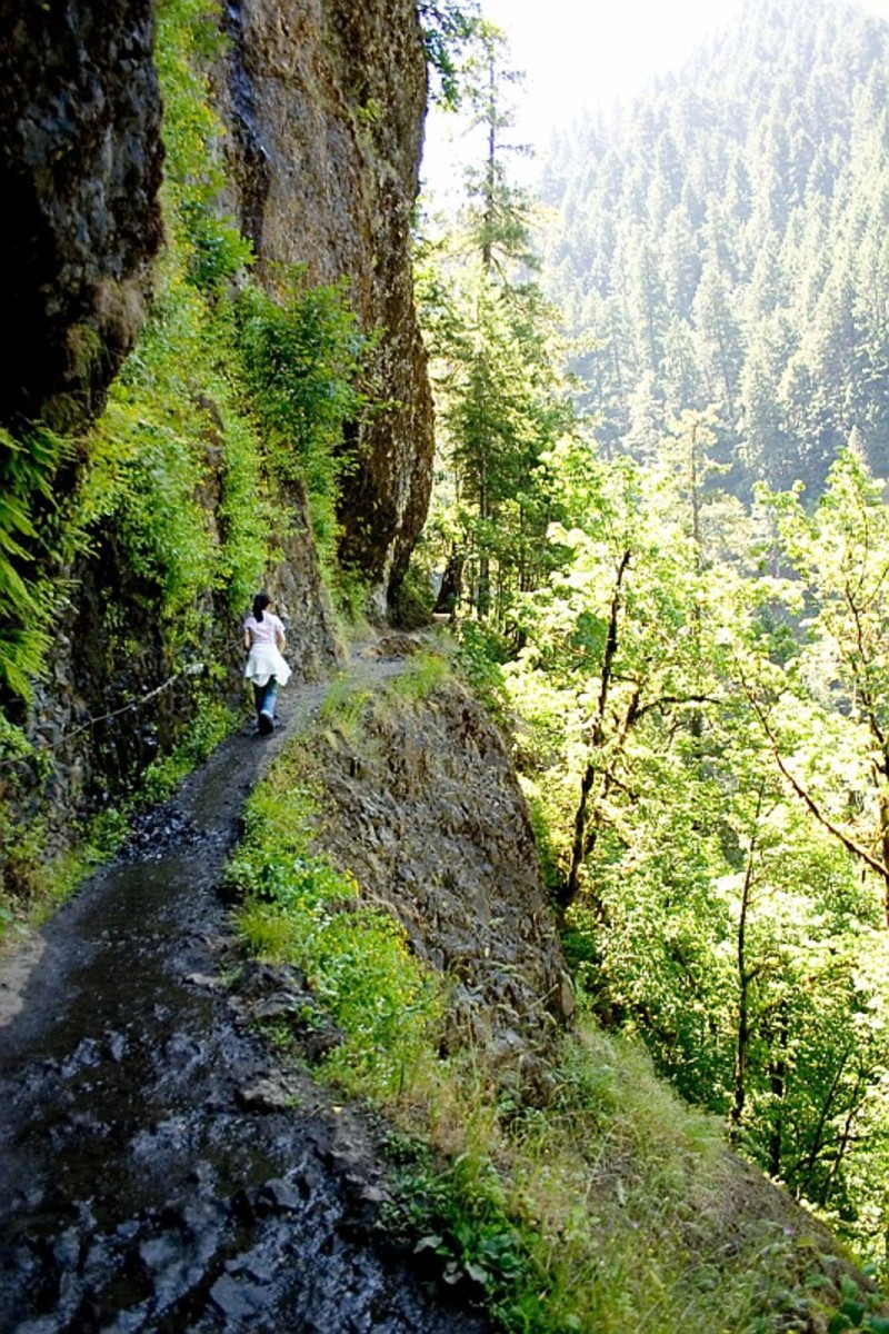 Hiking is the preferred term, in Canada and the United States, for a long, vigorous walk. Featured above is a hiking trail in Oregon (Multnomah County, Oregon)..