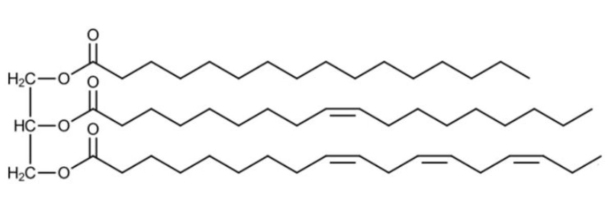 "Figure 11: Structure of a triglyceride. Modified from ""General structure of a fatty triglyceride. Fatty acids from top to bottom: Palmitic acid, oleic acid, α-linolenic acid"" by Nothingserious, which is in the public domain."