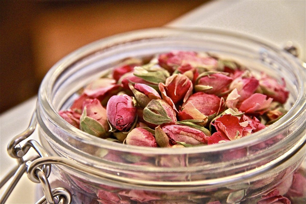 Rosebuds make excellent tea.