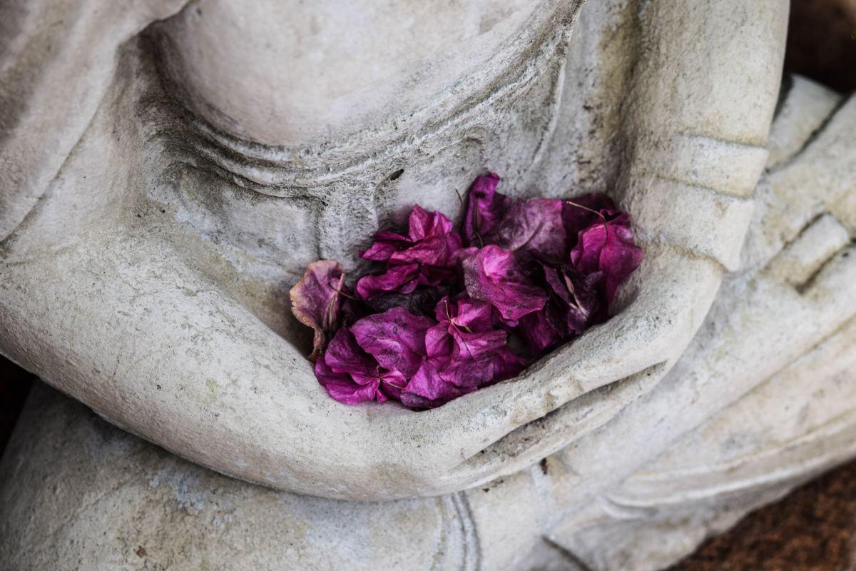 the-holistic-benefits-of-hatha-yoga