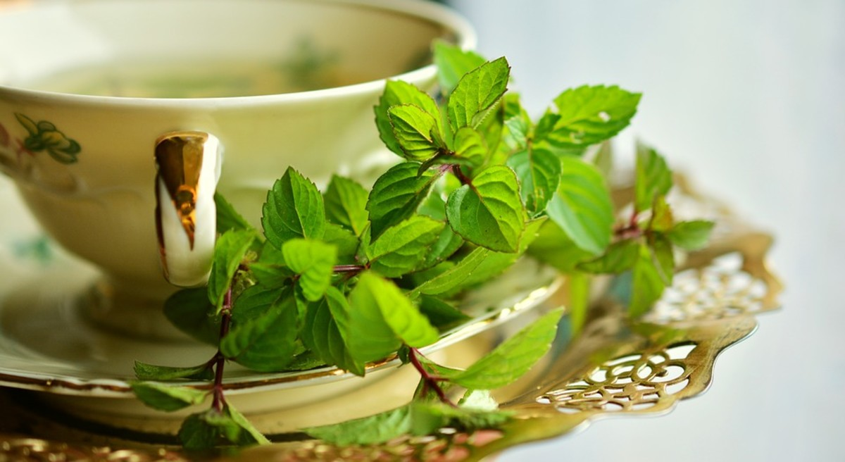 Cup of Peppermint Tea