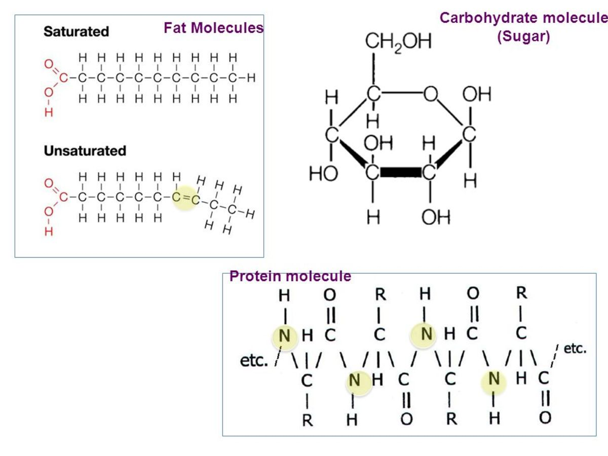 Oxidation of a carbohydrate molecule is easily triggered by adding some more oxygen atoms. Fat molecules oxidate slower to but provides much more energy.