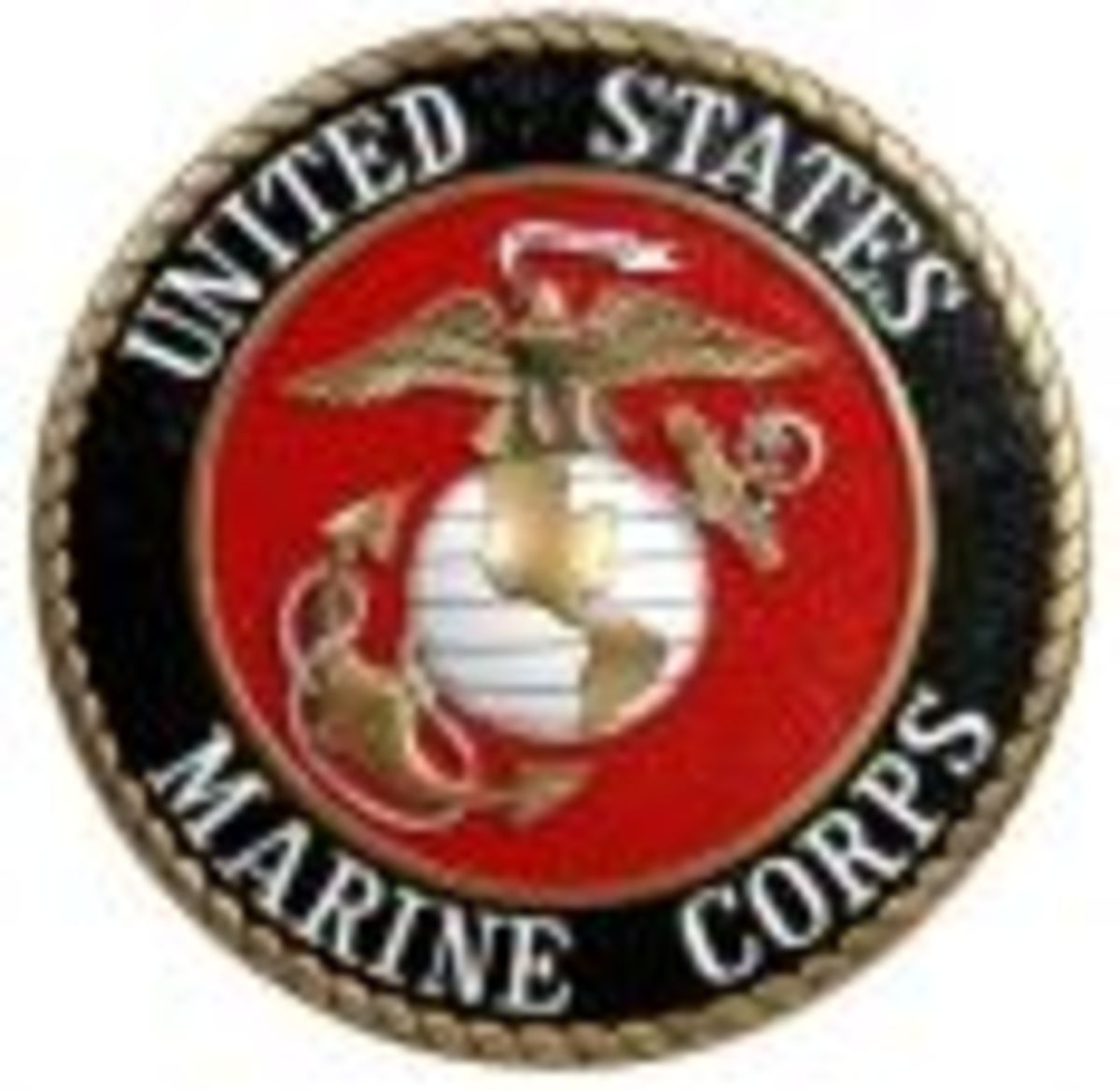 Marine Bootcamp, The Real Deal