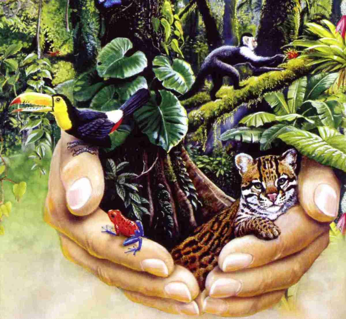 save trees, save wildlife