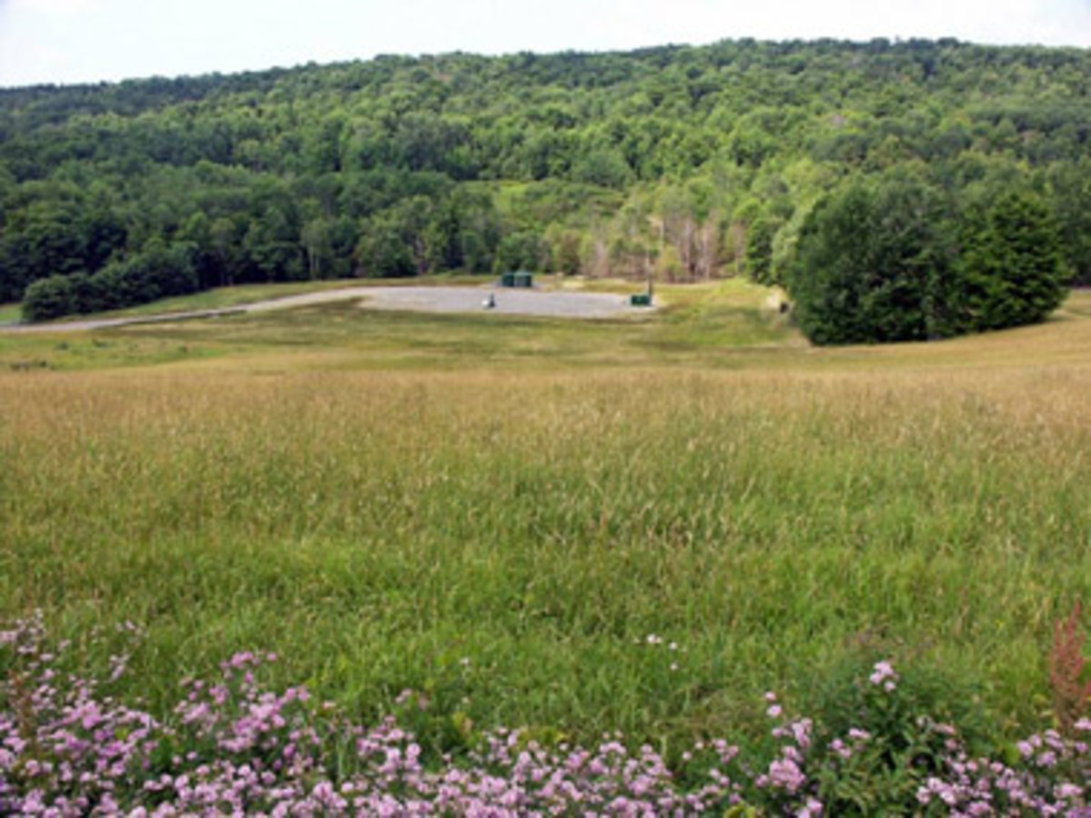 Reclaimed area after natural gas drilling in Chemung County, NY.  (DEC.NY.gov)