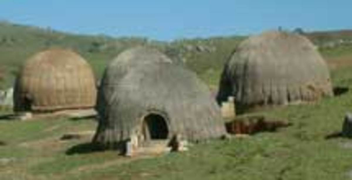 The traditional living huts of the Xhosas, and they herded cattle, grew maize, tobacco and sorghum, woodworking and ironworking was important man's job