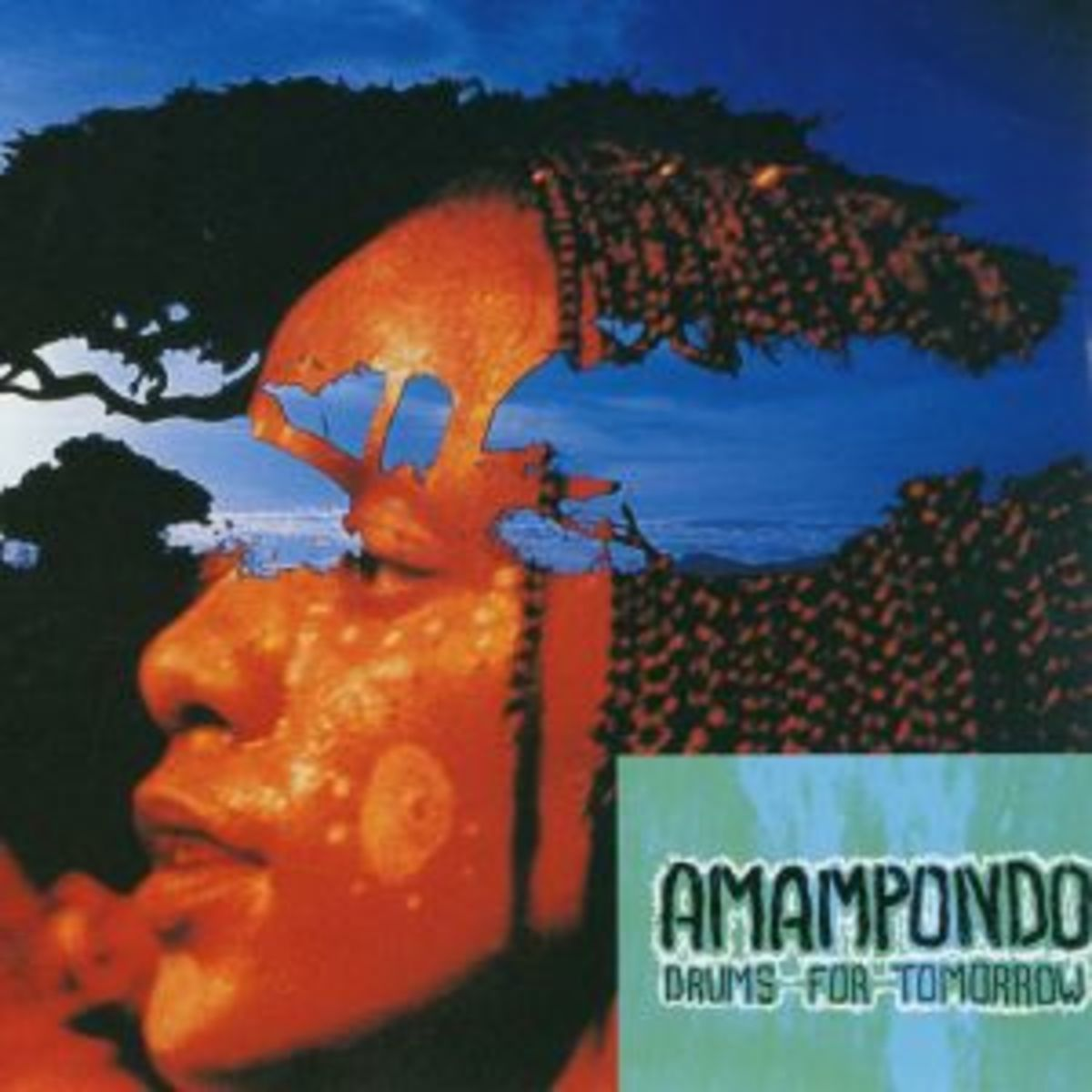 Amampondo Musical Troupe - the face of one of the background singers