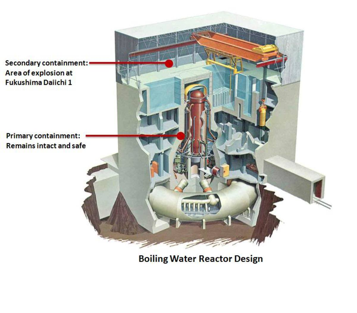 Diagrams of the boiling water reactor (Brook).