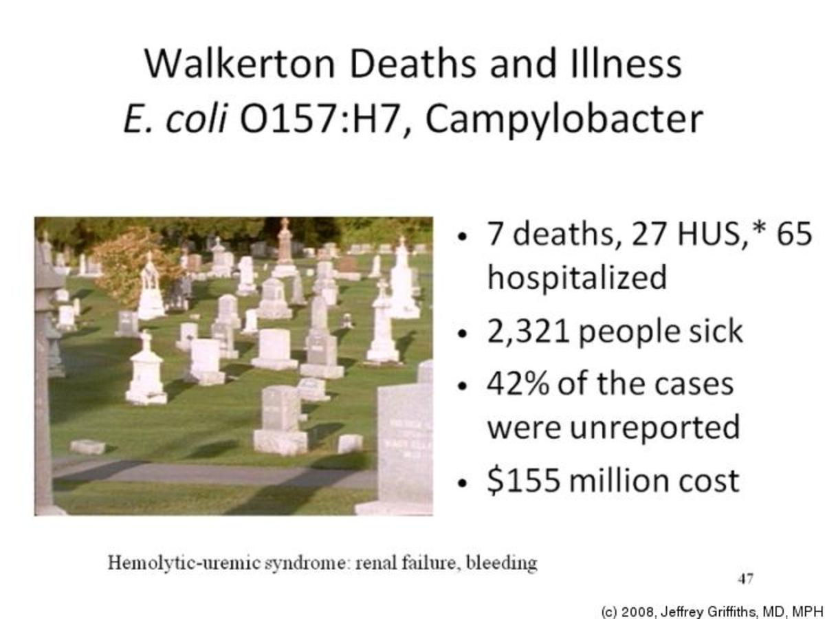 walkerton water tragedy For the people of walkerton it seems almost surreal that nearly three years have past since the water borne e coli tragedy in the spring of 2000 with the passage of time, a degree of individual and communal healing has taken place.