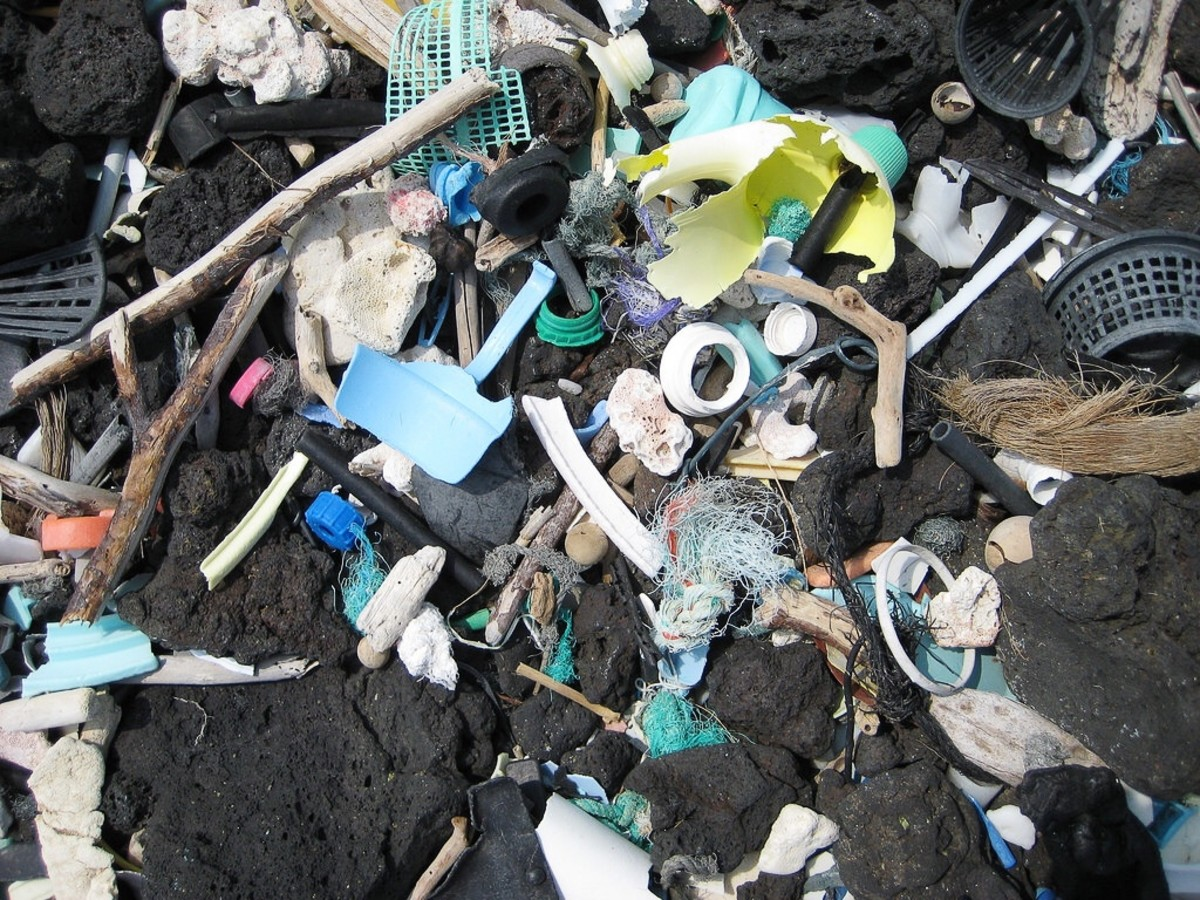 Plastic waste on a Hawaiian black rock beach