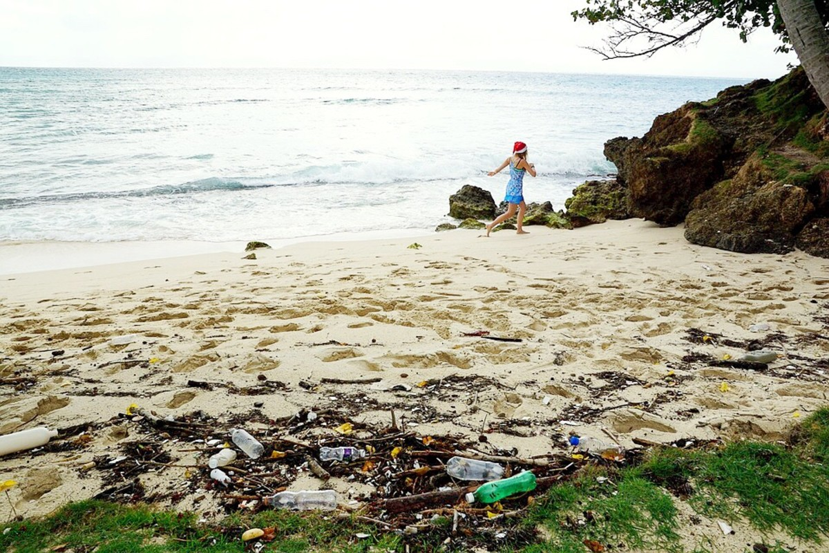 Plastic pollution on a beach in the Caribbean