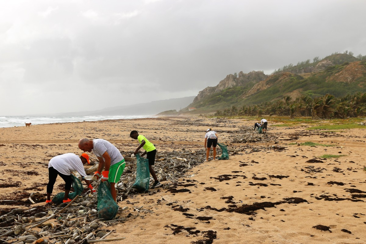 A cleanup of beach plastic that the photographer helped to organize