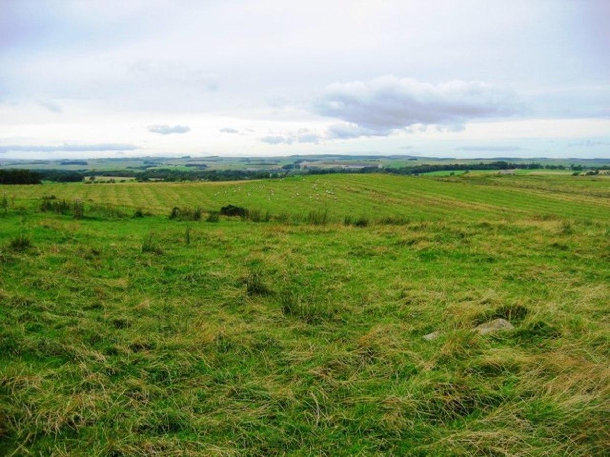 Vast fields