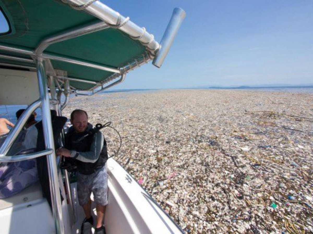 Caribbean garbage patch