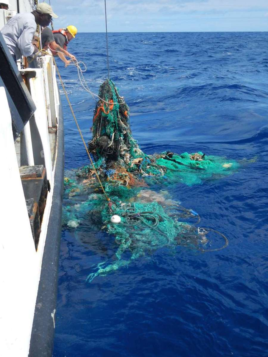 Plastic waste in the Great Pacific Garbage Patch