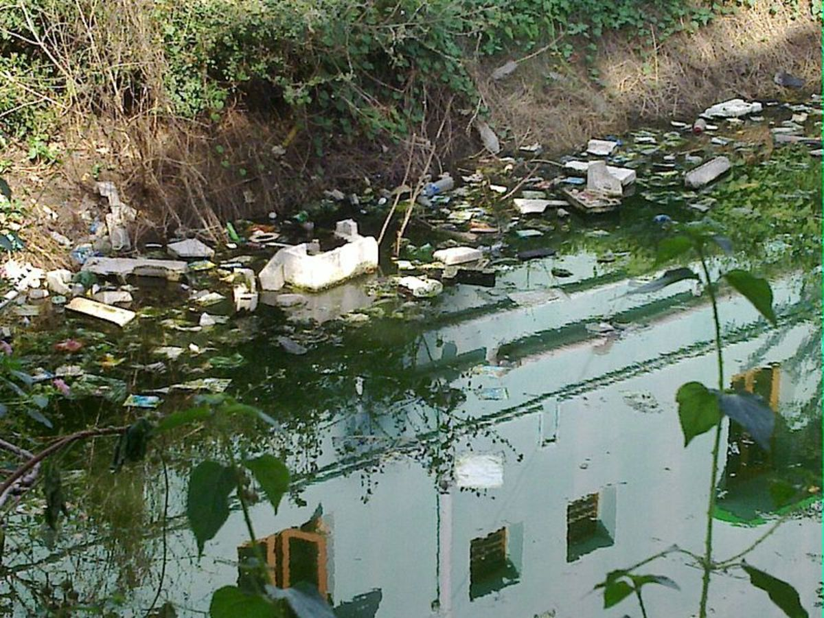 People have trashed lakes, rivers, and streams as well as the ocean. This water sinks down into the aquifer, taking the pollution down into our drinking water, leaving lighter trash by the shores, and moving the rest into the ocean.