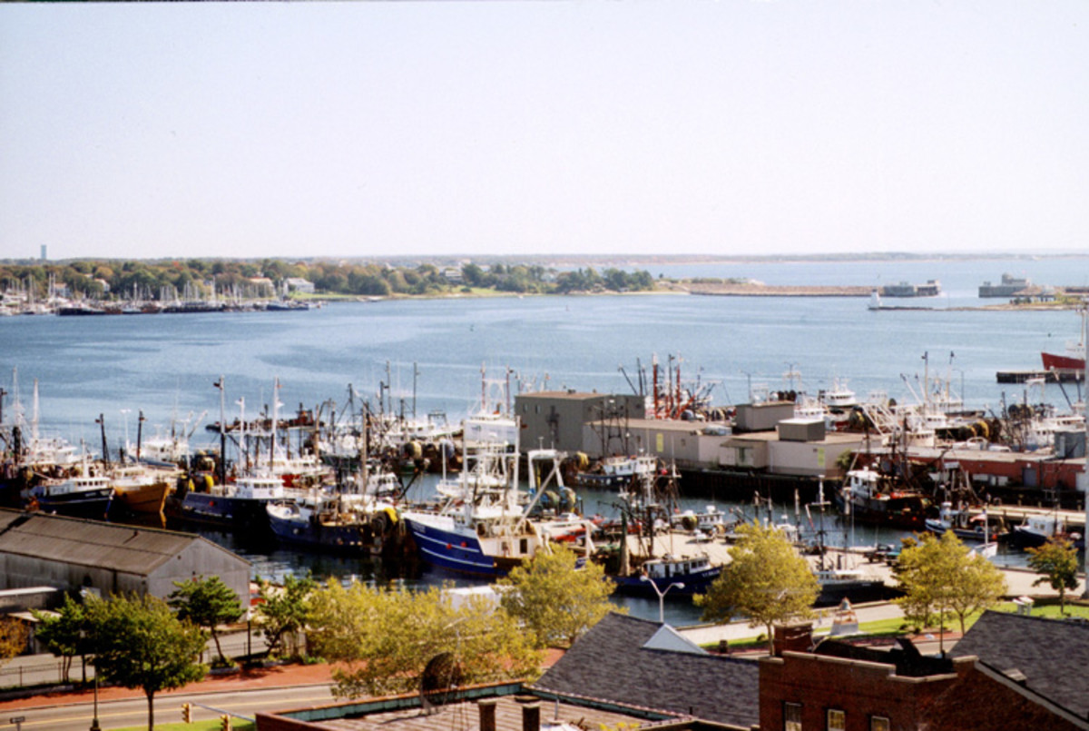 New Bedford Harbor is a leading fishing port in the U.S, mainly focusing on scallops. Local electronics manufacturers were major polluters during the 1940s to mid '70s. Ships dumping bilge water over the side also pollute.