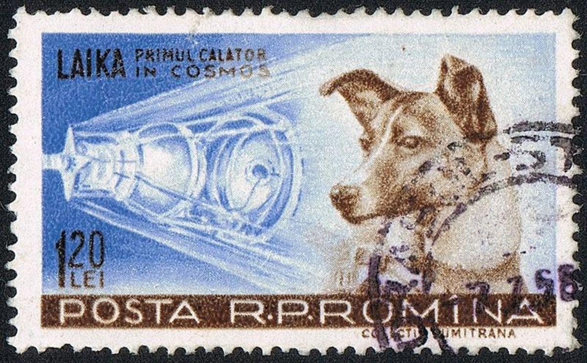 Romainian Laika Stamp