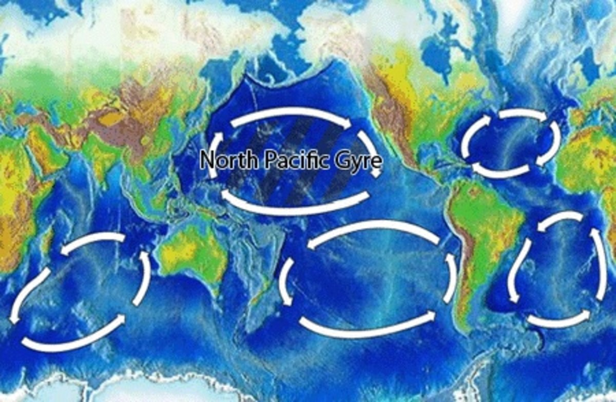 The Great Pacific Garbage Patch is an area of ocean in the North Pacific Gyre. It contains a large amount of microplastic.