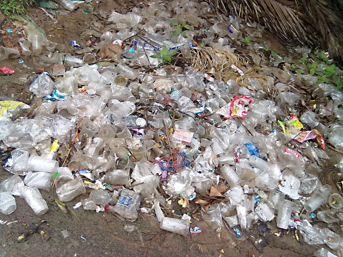Plastic waste from a single village