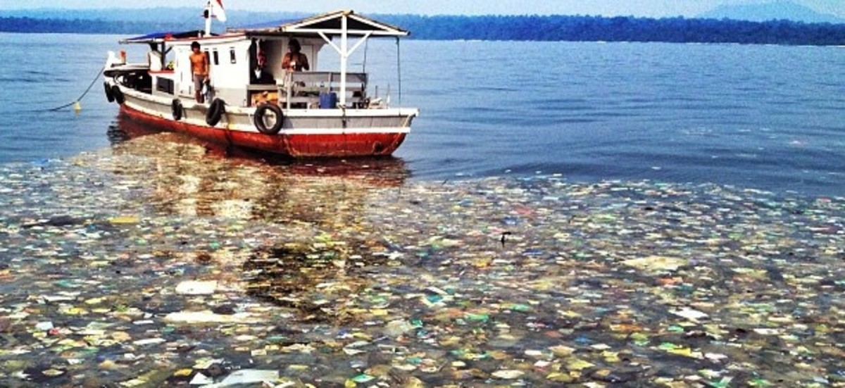 what-is-water-pollution
