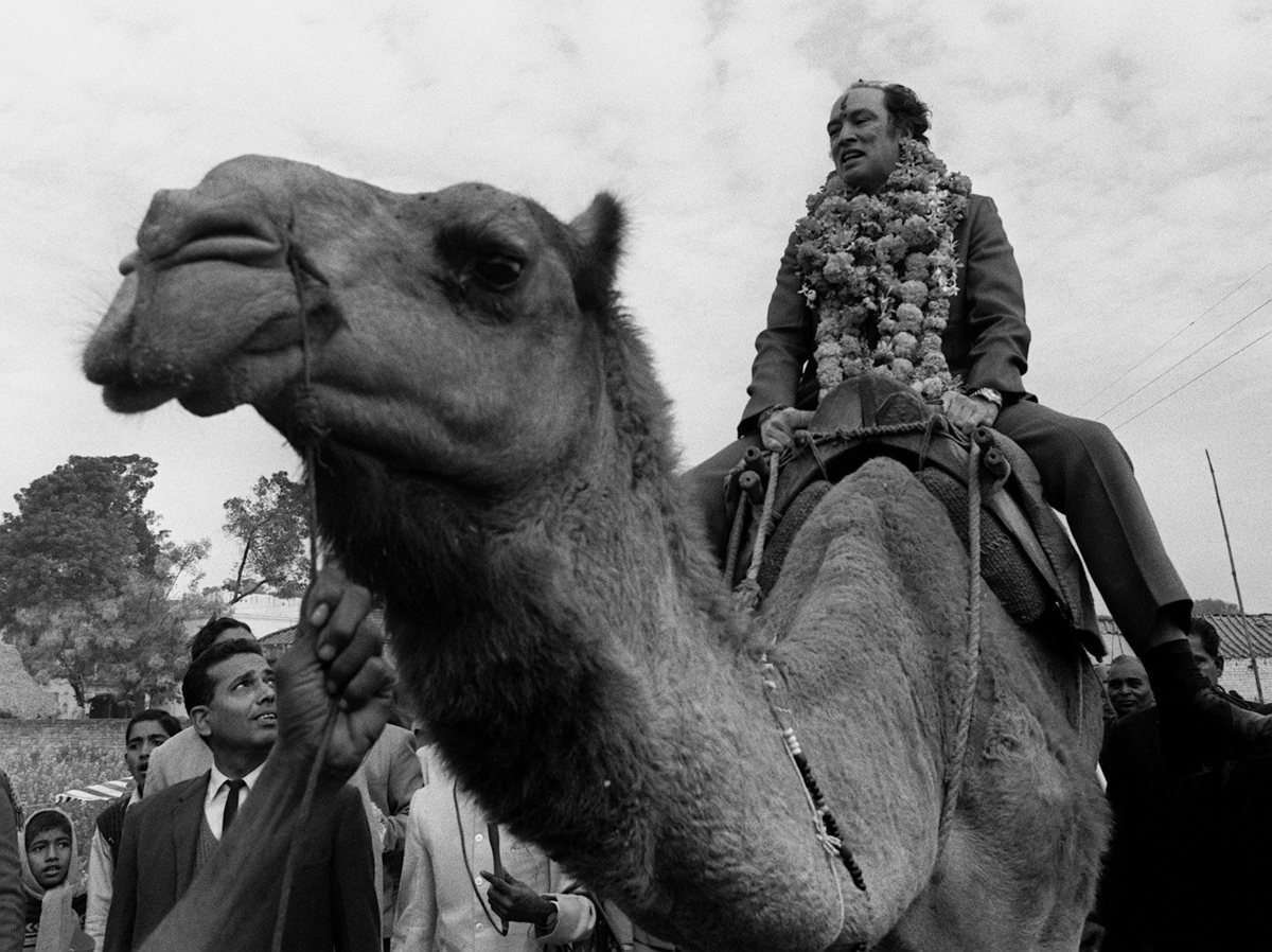 Pierre Trudeau, with a garland around his neck and a Hindu greeting symbol in paste on his forhead, rides a camel  in the village of Benares, India, where he dedicated a water well (Jan 12, 1971).