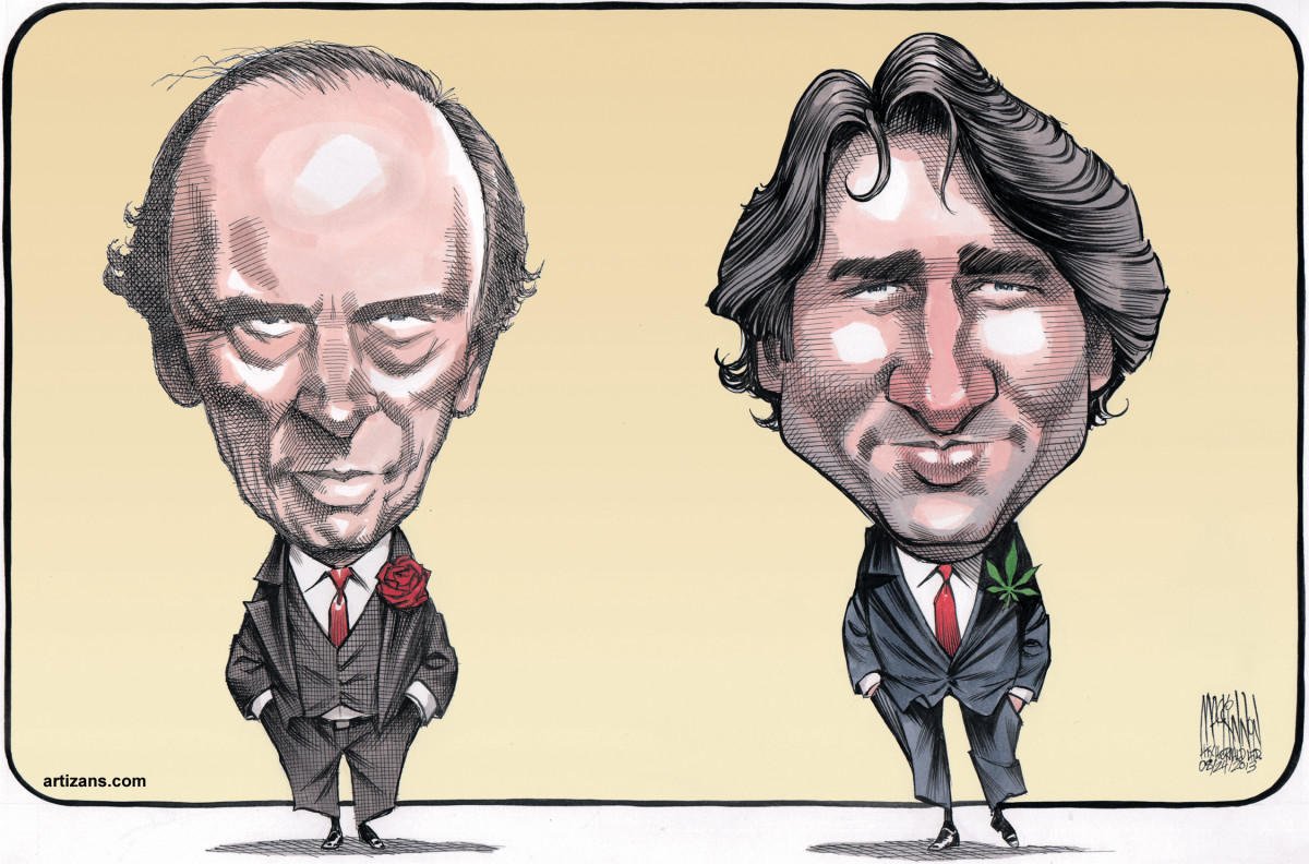 Rose vs Pot Leaf editorial cartoon by Bruce MacKinnon (Aug 2013)