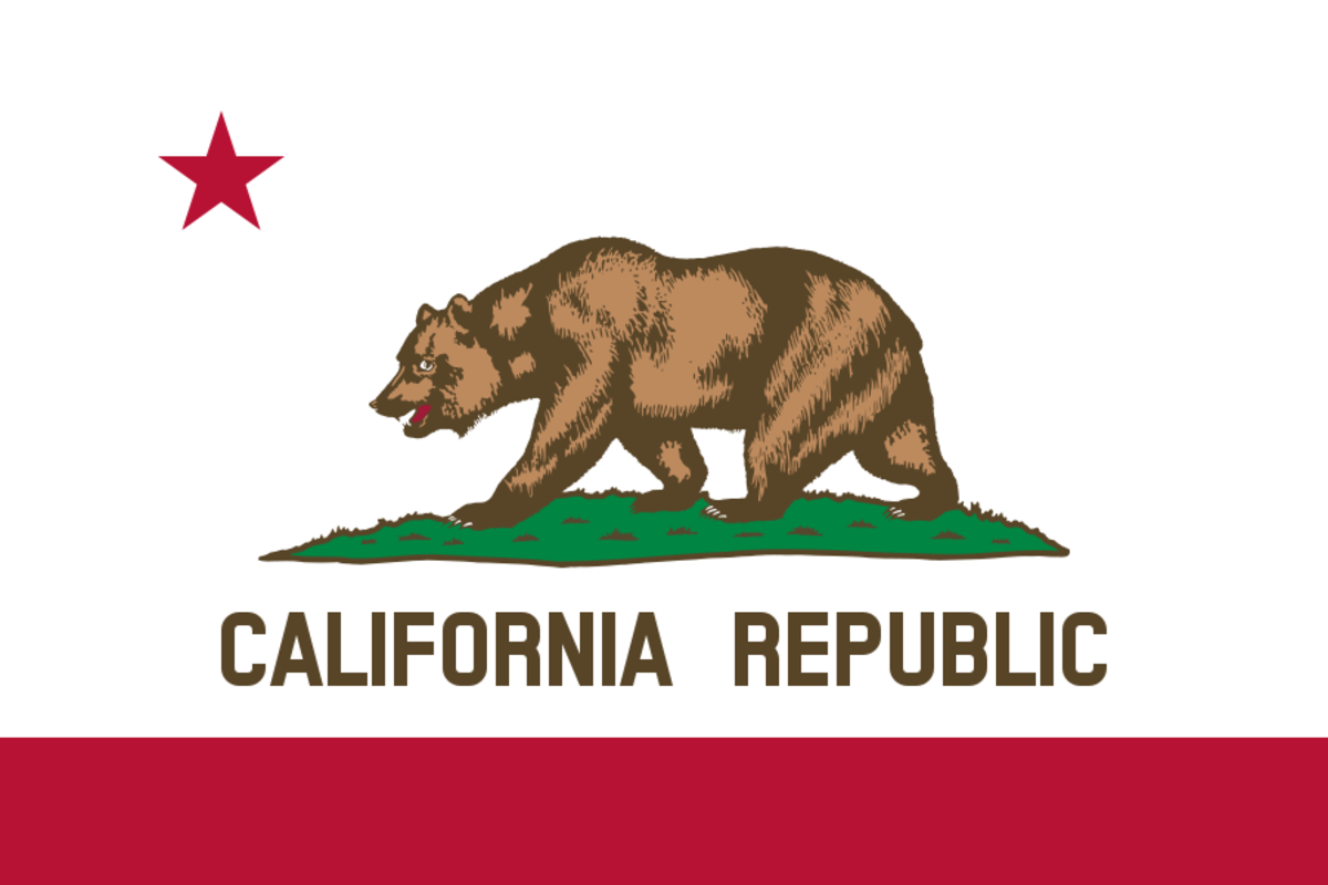 California's current flag