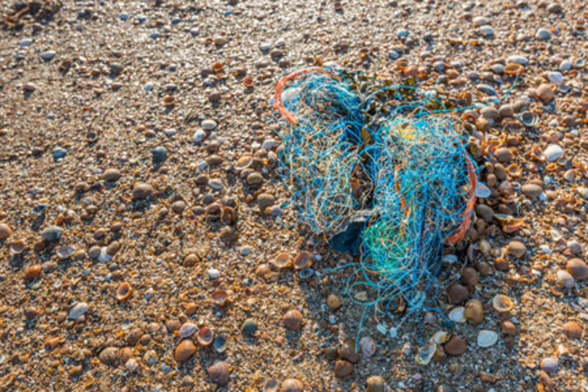 Coloured nylon wire from ropes and fishing nets and other debris washed ashore