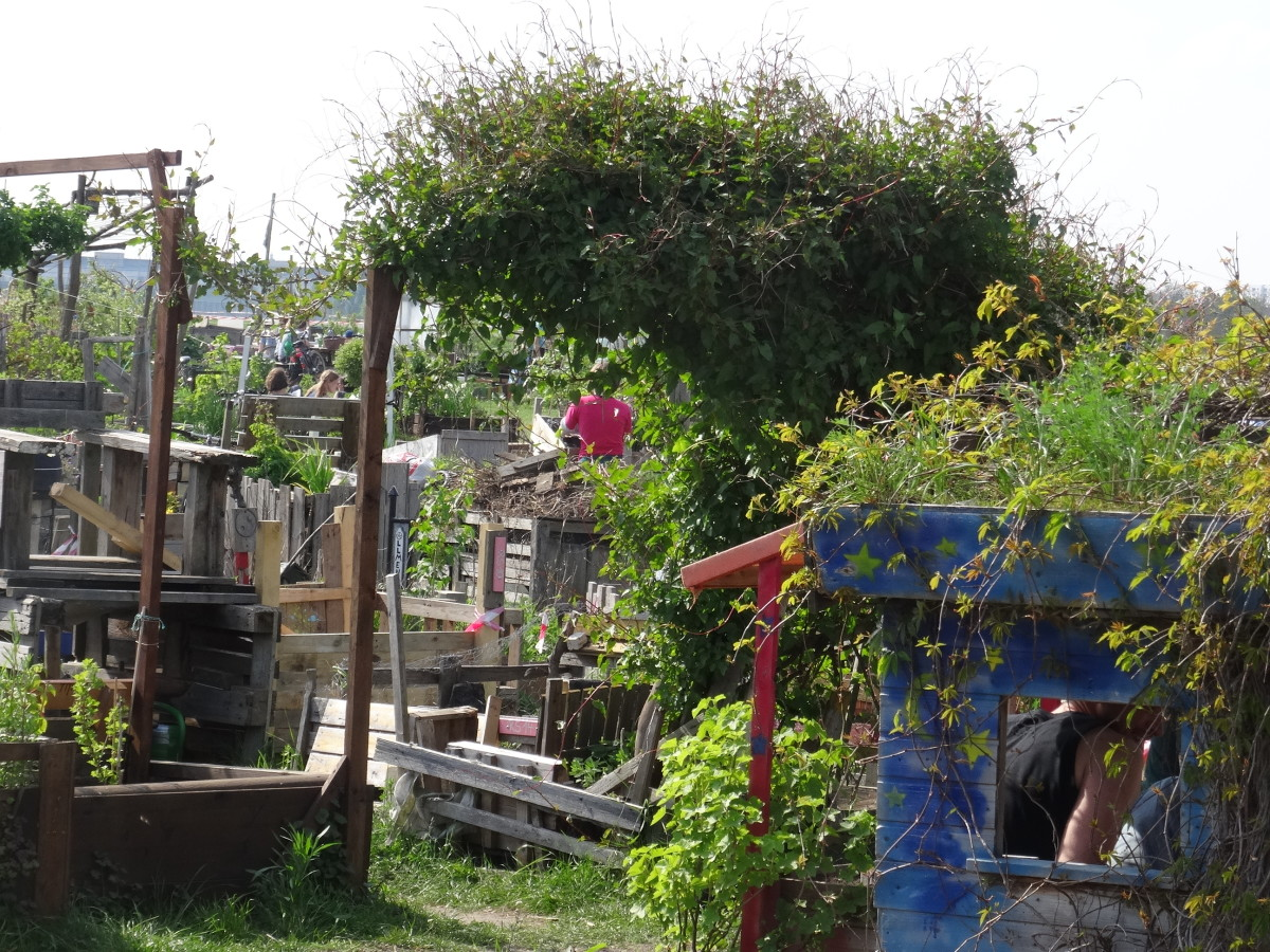 Parents have carried scrap materials and tough greenery, onto the field and colonised it for their children.