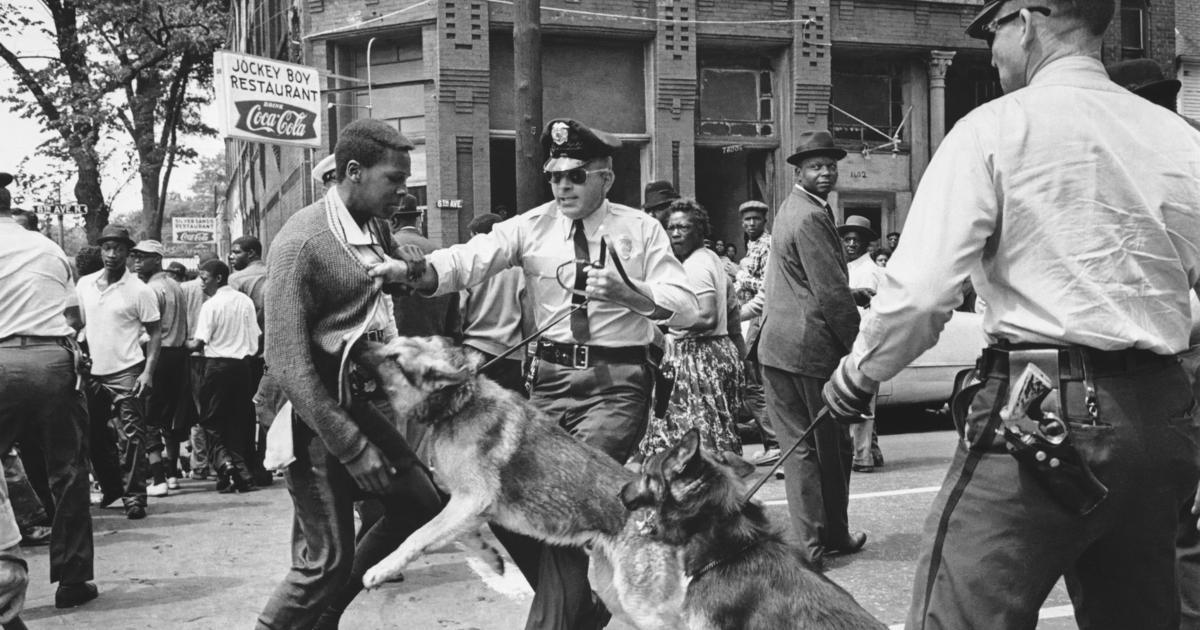 A young man braves a vicious police dog
