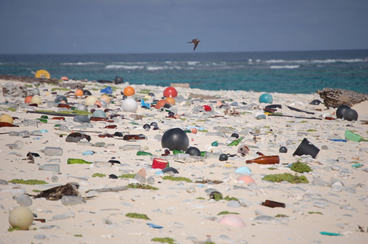 our-plastic-planet