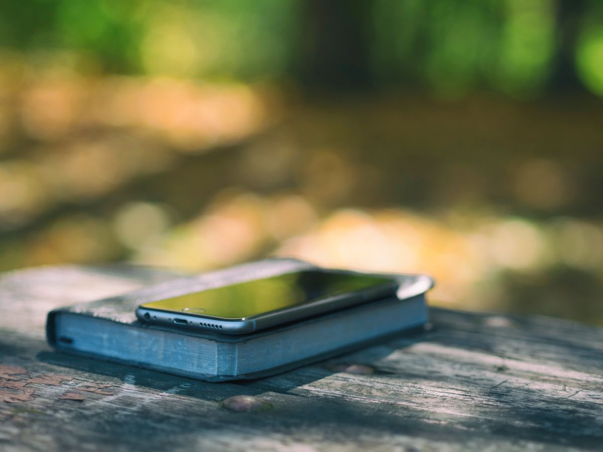 Cell phones in school are likely going to be lost or stolen.  A great reason why cell phones should not be allowed in school.