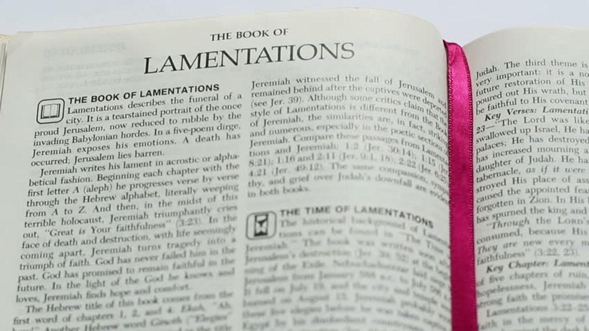 The Book of Lamentations where Jeremiah wept throughout it.