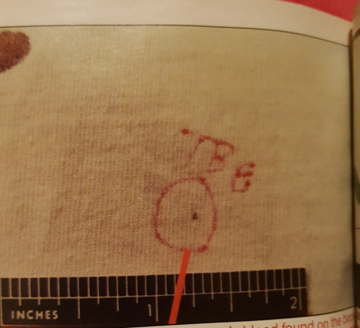 The circle indicates this is Devon's blood on the back of Darlie's night shirt. This is the totality of Devon's blood on the back of the shirt. It's not spatter, a splash, or even a drop. It is a minute, pinprick DOT. It proves nothing.