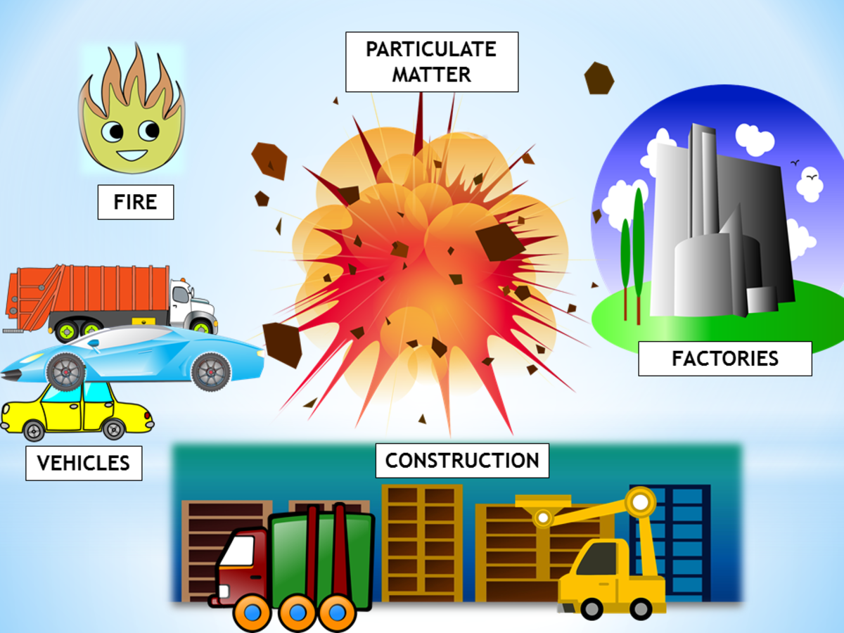 Sources of Particulate Matter