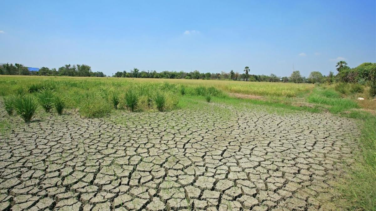 Some of the world's rich farmland areas will suffer prolonged droughts in a rapidly warming world.