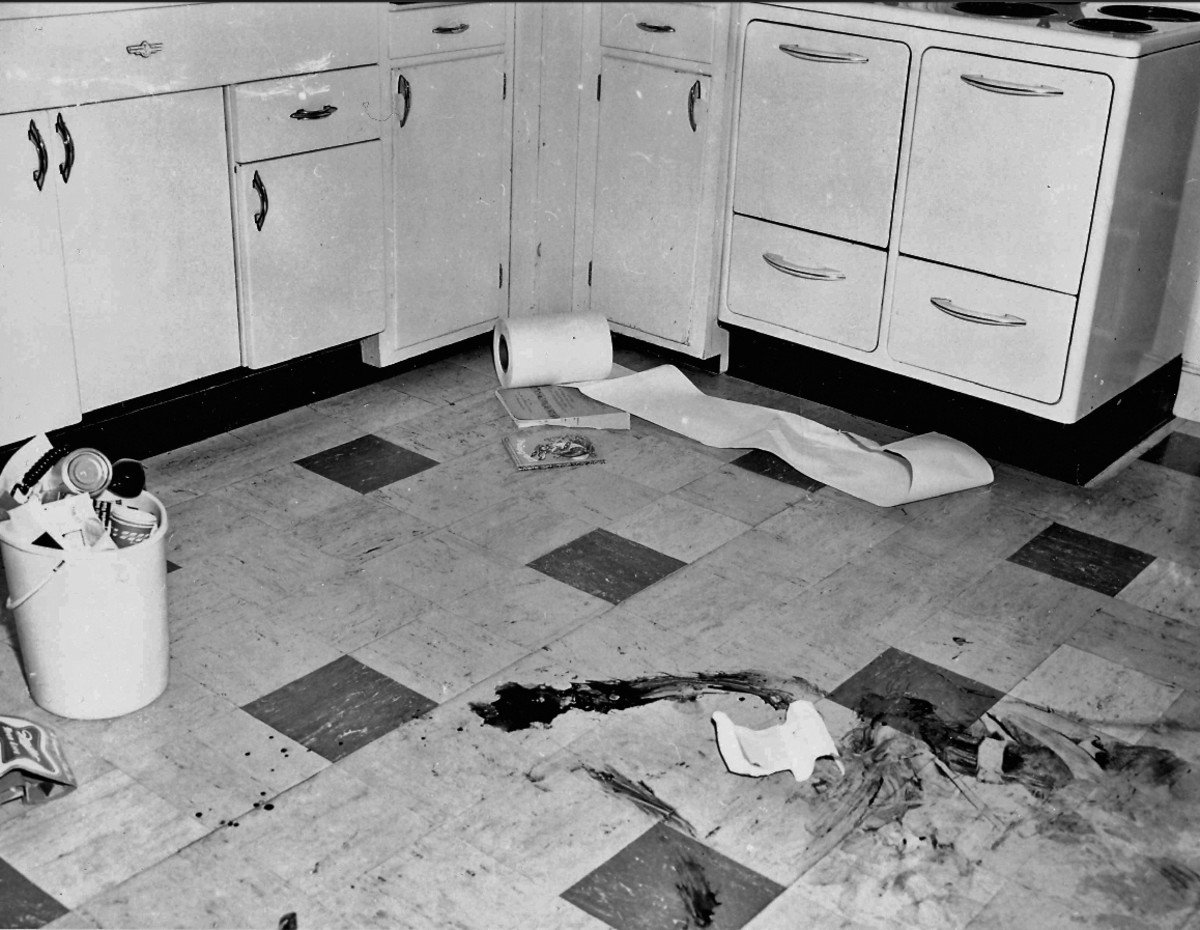 Kitchen crime scene photo