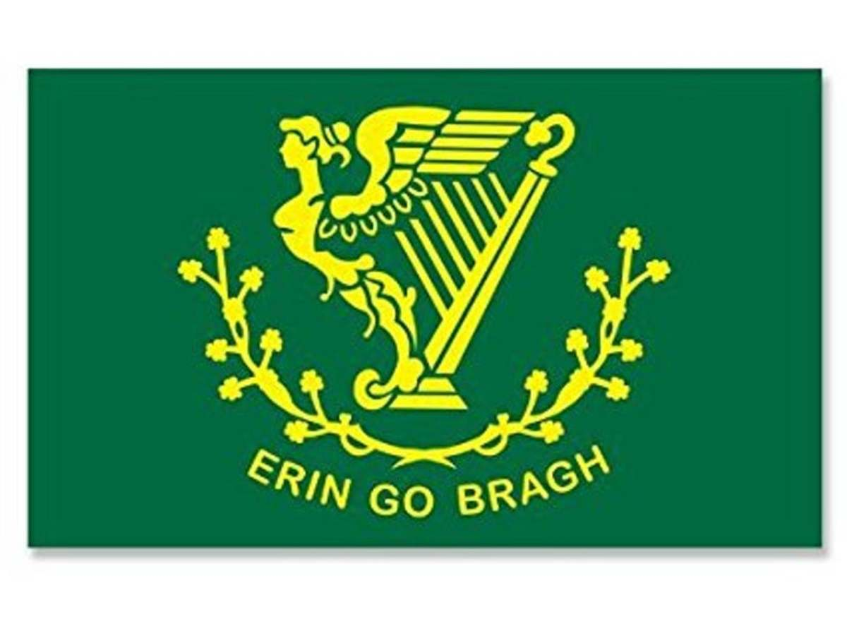 Prior to the tricolour gaining in popularity, the 'Green Flag' with the gold harp had been in common use as a de facto National flag. Today it tends to be popular with a small rump of Hibernian little Irelanders.