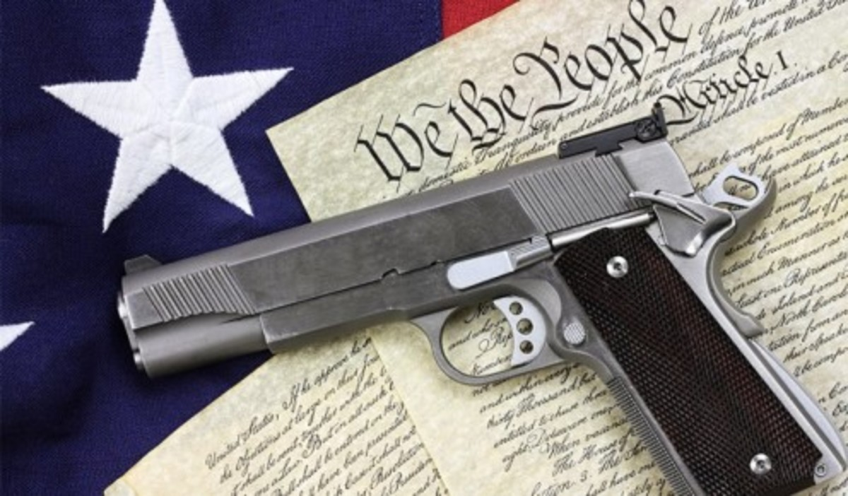 There are 7 core gun laws, but arguably as many as 20,000 total specific laws pertaining to guns.